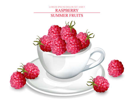 Raspberry in a white cup Vector realistic. Summer fruits delicious template. 3d detailed illustrations