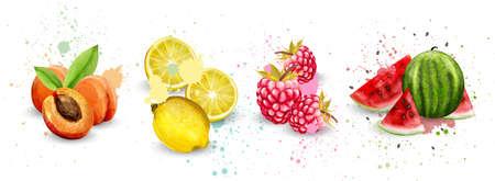 Watercolor fruits set Vector. Apricot, lemon, raspberry and watermelon delicious illustration