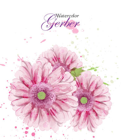 Watercolor gerber flower blossom Vector. Vintage greeting, or wedding invitation. Summer floral decoration bouquets