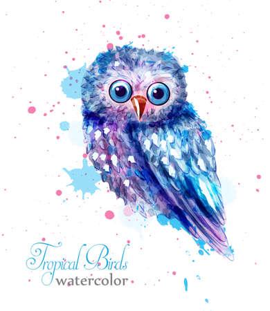 Vector colorido de la acuarela del pájaro del búho. Pájaro lindo azul con manchas de pintura en el fondo