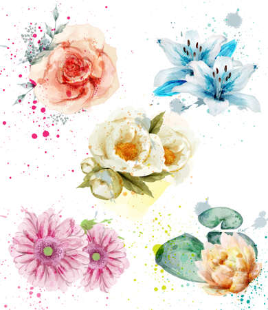 Beautiful flowers watercolor set Vector. Blue lily, gerber and roses floral collections