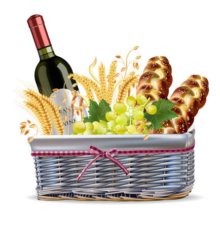 Basket with wine bottle, grapes and bread Vector realistic detailed design illustrations