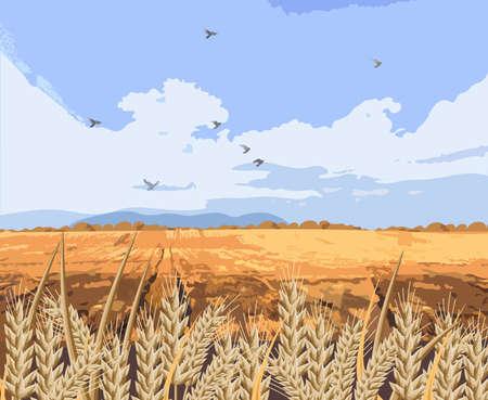 Wheat field Vector background. Beautiful fall season card