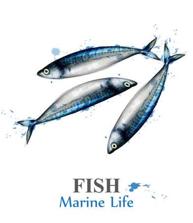Vettore dell'acquerello di piccoli pesci isolato su bianco. Illustrazione in stile dipinto