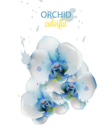 Blue orchid flowers watercolor isolated Vector. Delicate floral decoration