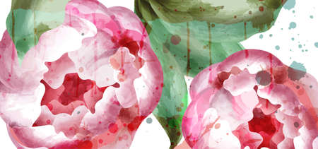 Peony flowers watercolor background Vector. Wedding Invitation, ceremony, delicate postcard, Women day greeting card. Beautiful spring trendy color