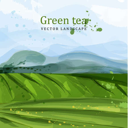 Green tea fields watercolor