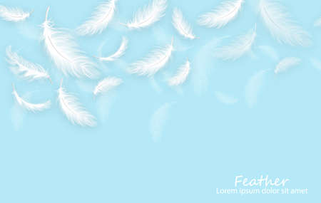 Feathers realistic. White feathers on blue card templates Ilustración de vector