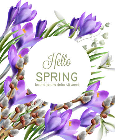 Crocus flowers Vector watercolor. Spring season delicate frame. Template design card for wedding, birthday, mother day