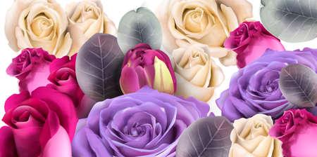 Purple roses bouquet Vector watercolor. Mother day background. Beautiful spring floral design Reklamní fotografie - 125329370