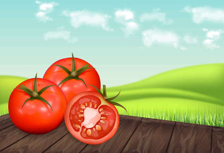 Tomatoes on wooden table Vector realistic. Green eco background. Detailed 3d banner template for label, icon, product placement Ilustrace