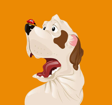 Dog scared of a ladybug Vector. Funny cartoon character