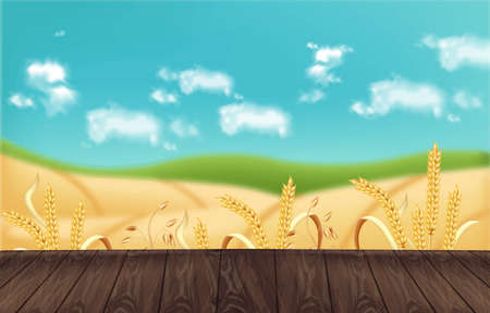 Oat fields Vector realistic background mockup. Wooden table template for product placement