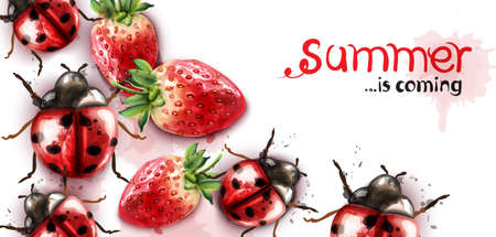 Summer season with strawberry and ladybugs Vector watercolor cards