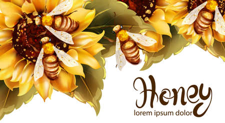 Bees making honey from sunflower Vector watercolor. Label template. Summer banner poster Illustration