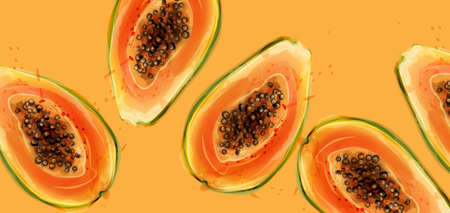 Papaya fruits Vector watercolor. Summer fresh juicy banner