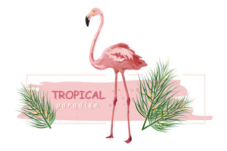 Flamingo banner Vector. Summer Sale promotion abstract  templates