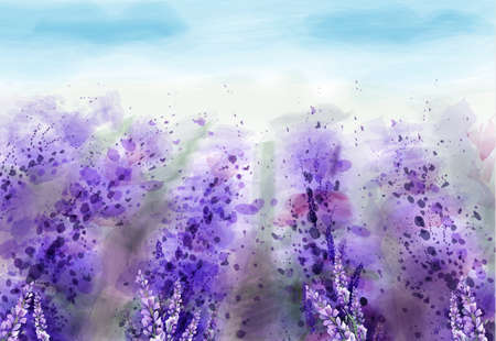 Lavender field Vector watercolor. Provence vintage background. Beautiful flowers painted styles
