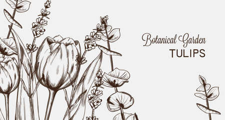 Summer tulip flowers line art Vector. Hand drawn decor texture vintage style