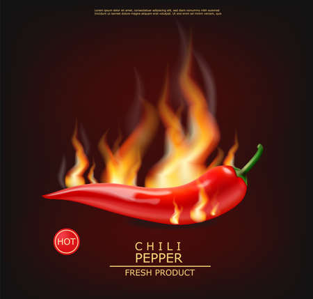 Chili on fire vector realistic. Hot pepper advert concept. Stock Illustratie