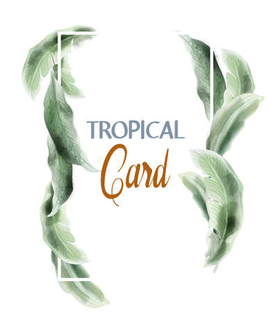 Green card leaves Vector watercolor. Summer round tropic botanical poster