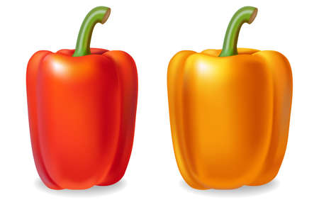 Pepper Vector realistic isolated on white 3d illustrations