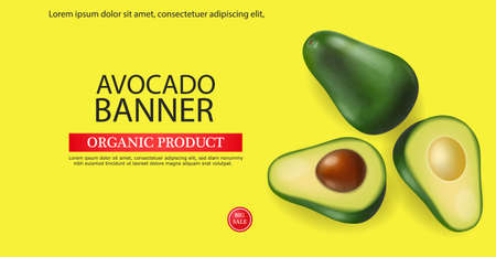 Avocado banner vector realistic. Menu page template layout. 3d illustrations