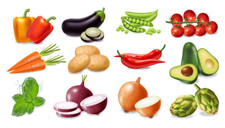 Vegetables set collection Vector realistic. Avocado, eggplant, carrots and tomatoes detailed 3d illustration