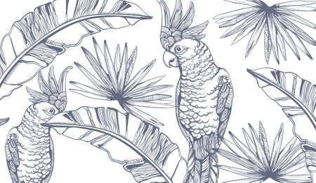 Parrot card  line art. Exotic palm leaves decors Stock Illustratie