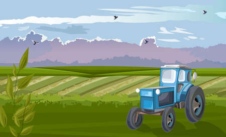 Blue tractor in the green field at daylight Standard-Bild - 133065264