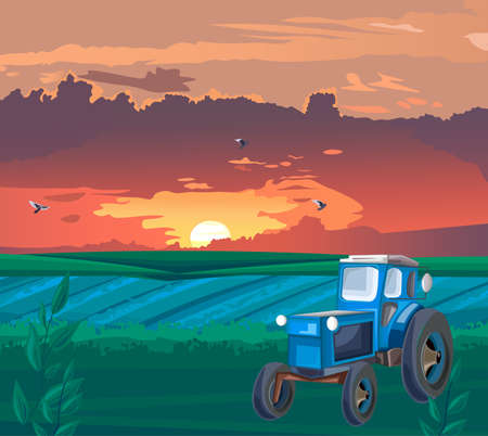 Blue Tractor in the field at sunset Standard-Bild - 133065759