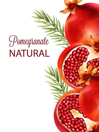 Natural red half sliced pomegranate with fir leaves
