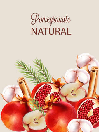 Natural red half sliced pomegranate with christmas ornaments. Cinnamon sticks, cotton, fir tree leaves, flowers, apple. Vector Ilustração