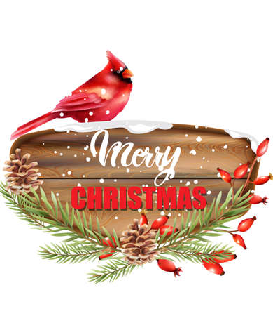 Merry Christmas written on wooden piece. Red tropical bird sitting on sign. Snow falling. Conifer cone, red berries and fir tree leaves. Winter vector Illusztráció