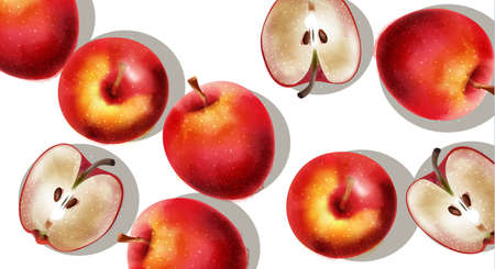 A bunch of red apples, half sliced. Vector