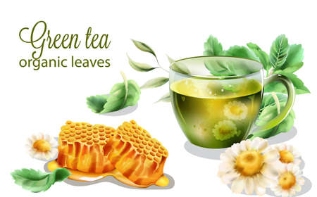 Organic green tea with mint leaves and decorations Illustration