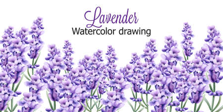 Lavender watercolor drawing with isolated background Ilustracja