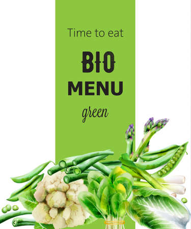 Bio Menu cover with various vegetables. Asparagus, beans, onion, spinach, cabbage, pepper cauliflower 일러스트