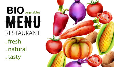 Colorful line art Fresh vegetables