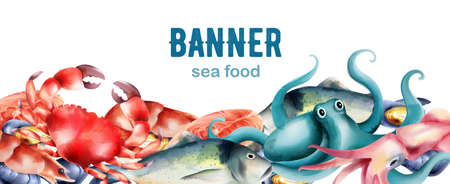 Watercolor fresh fish and mollusc from the sea. Shrimp, steak, crab, oysters, octopus. Banner vector