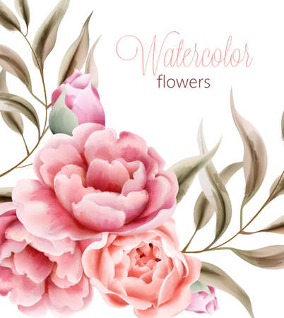 Watercolor rose peonies flowers with brown leaves on background. Vector