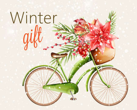 Green classic bike with basket full of flowers and green pine tree leaves, berries. Winter gift with snowing theme. Vector 向量圖像