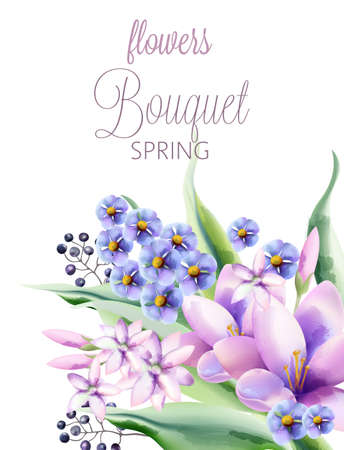 Bouquet of spring flowers with crocus, violet, lilac flowers and berries. Vector