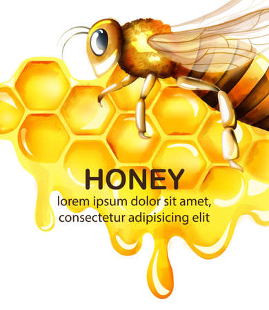 Honey watercolor set with honeycomb and big bee flying