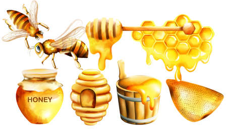 Honey watercolor set with jar, dipper, bees, honeycomb, house and bucket Ilustracja