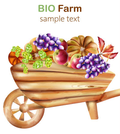 Bio farm composition with wooden wheelbarrow filled with artichoke, pumpkins, apple, grapes and leaves. Watercolor Vector