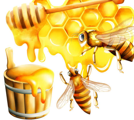 Honey watercolor set with honeycomb and big bee flying and filling the bucket. Place for text. Vector
