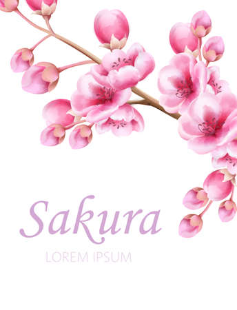 Sakura flowers on branch in watercolor style. Place for text. Vector