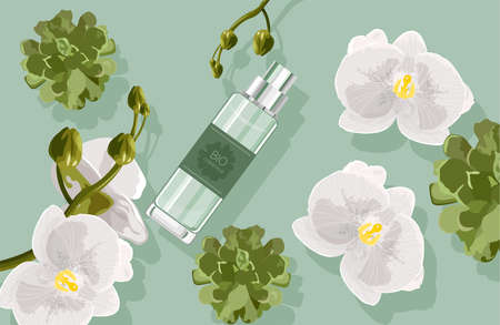 Bio cosmetics composition with white orchid flowers and green leaves, cactus.