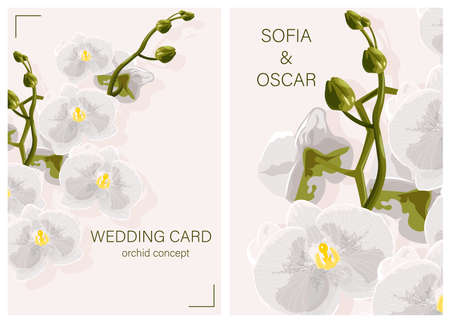 Wedding card with White Orchid Flowers concept and place for text  イラスト・ベクター素材